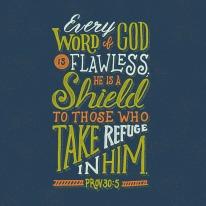 Proverbs-30-5