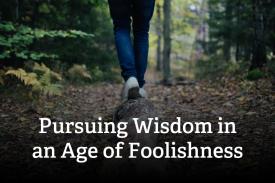 Pursuing-Wisdom-846x564